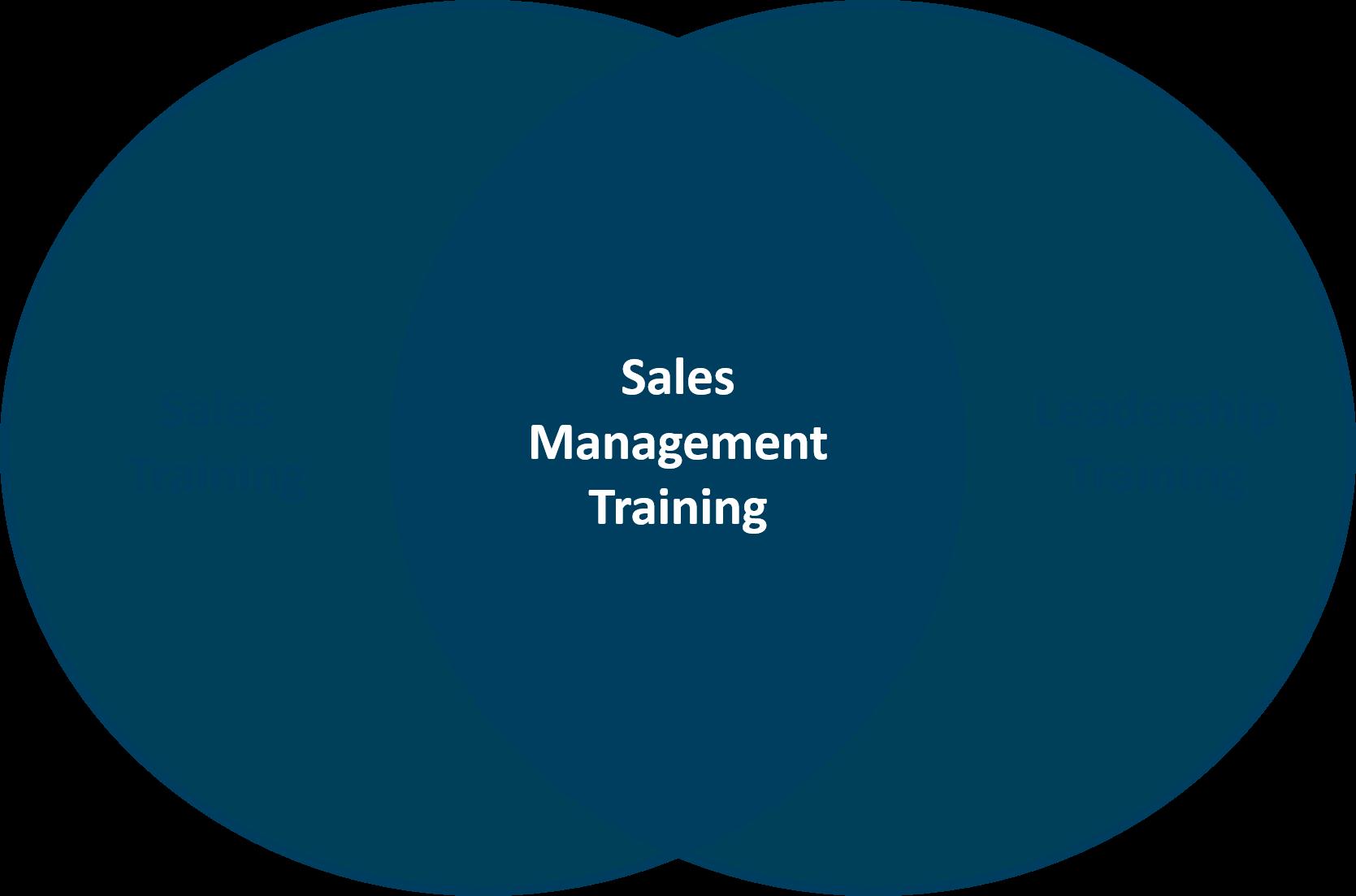 Sales management training skills gap